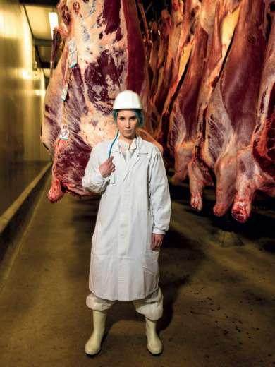 Carcasse bovine durante il processo di trasformazione